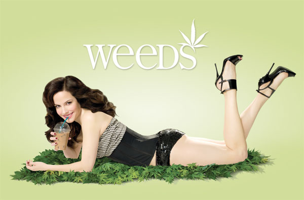 Image result for weeds the show